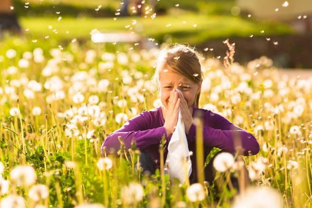 Điều trị viêm mũi dị ứng 1