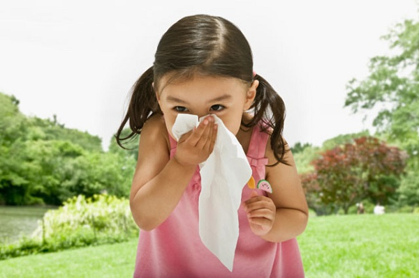 Nguyên nhân viêm mũi dị ứng trẻ em 1