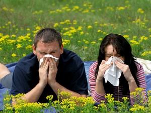 Viêm xoang, viêm mũi - Sơ sểnh là bệnh 1