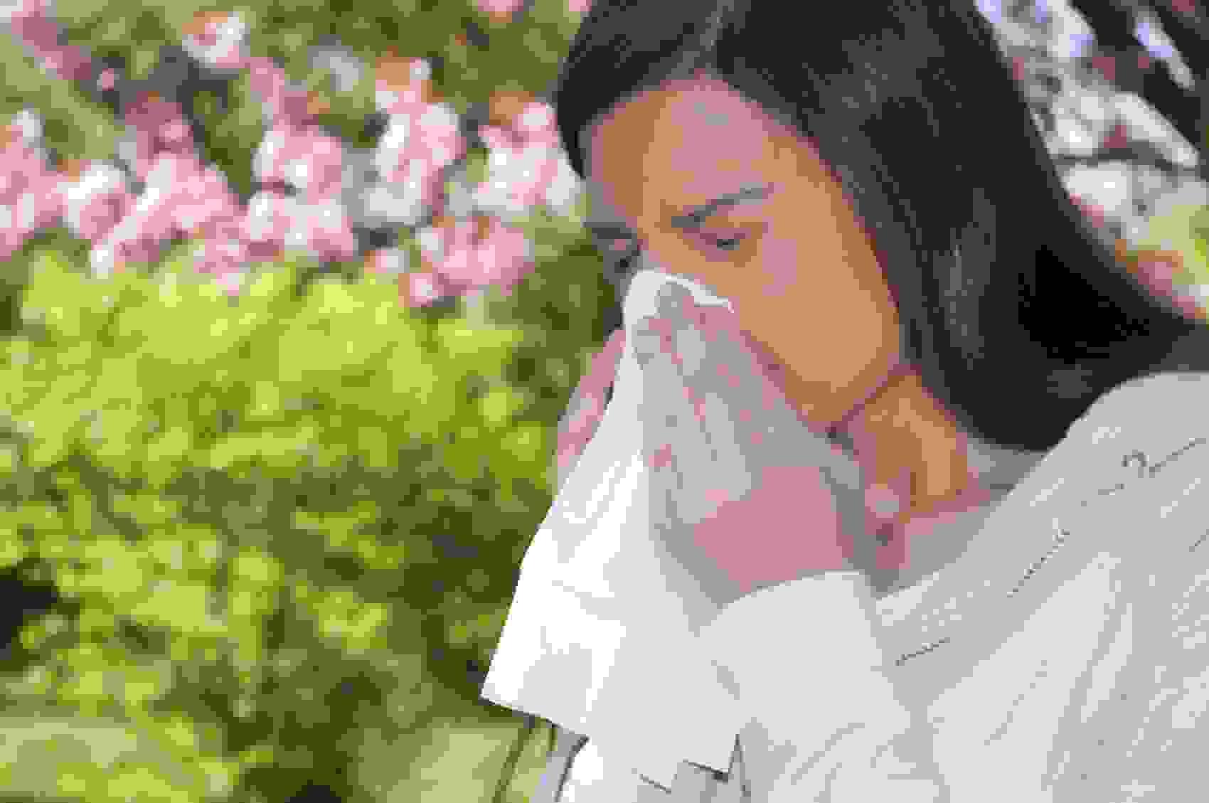 Triệu chứng viêm mũi dị ứng 1