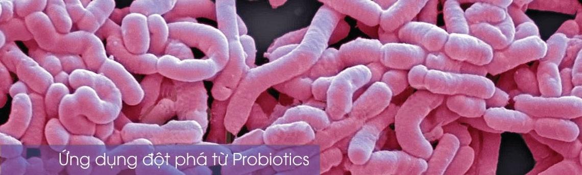 Ứng dụng ImmuneGamma trong điều trị Viêm xoang mạn tính: 1