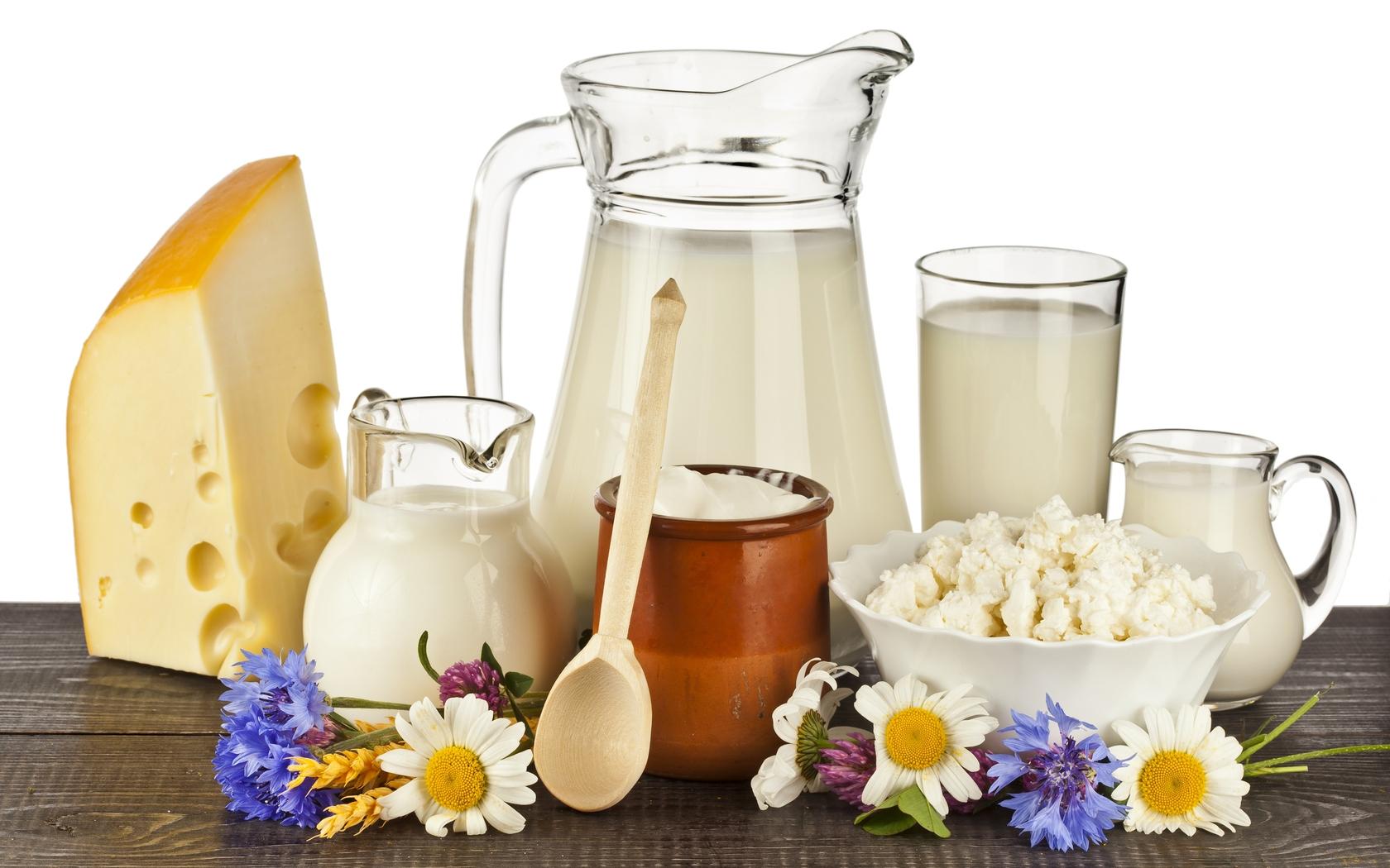 Sữa và những sản phẩm làm từ sữa 1